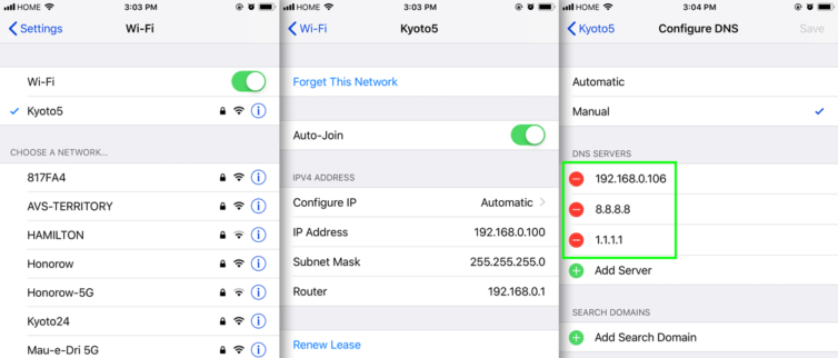 IPhone DNS settings